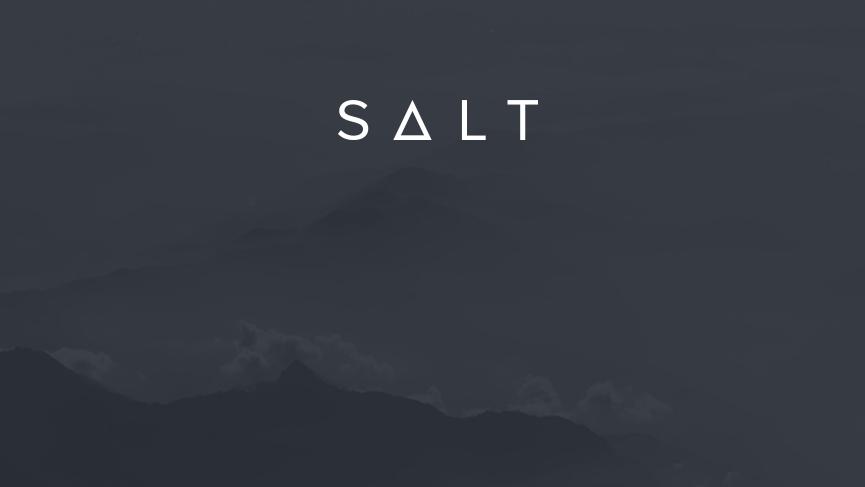 SALT introduces blockchain-backed loan platform