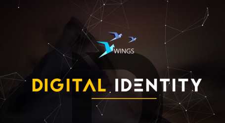 WINGS token contract successfully passes audit by Digital Identity
