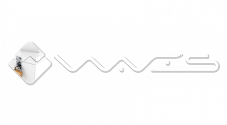 "Waves to develop ""liquid democracy"" applications"