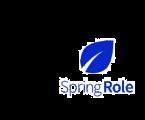 AmaZix chooses SpringRole's blockchain protocol for professional profile verification