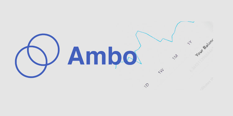 Crypto wallet Ambo releases update with transaction receipts, token sharing, and more