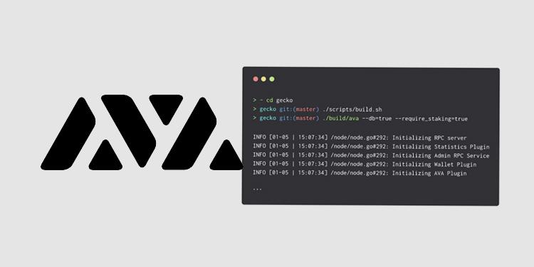 AVA Labs releases codebase for next-gen AVA blockchain platform