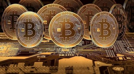 Working from Home: Using the Bitcoin to Your Advantage