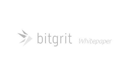Japanese AI company bitgrit sets sights on reforming access to data
