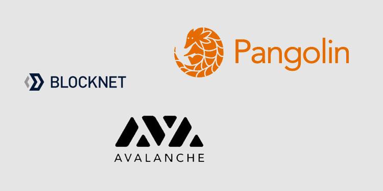 <p>Blockchain interoperability Stage Blocknet lists token on Avalanche-powered Pangolin DEX thumbnail