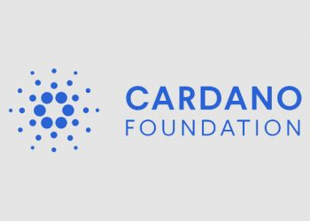 Cardano Foundation appoints two new hires to boost community management