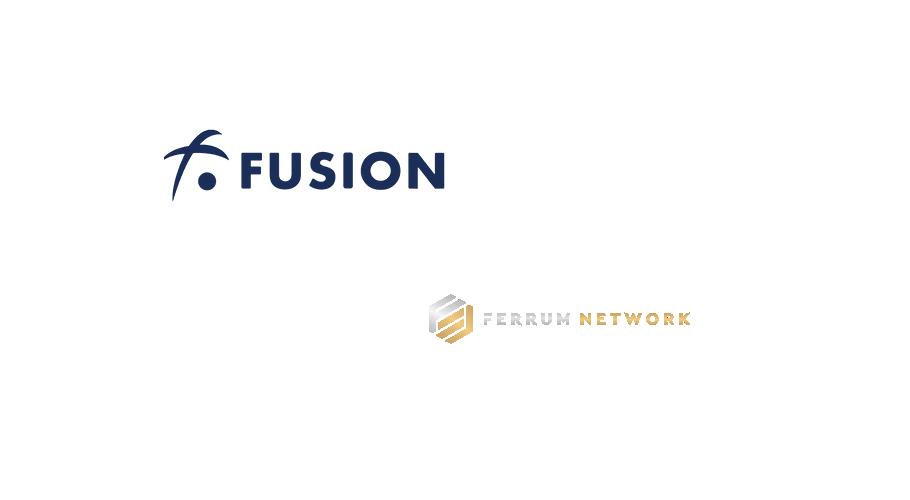 Ferrum Network description