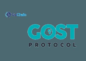 Gochain Gost Protocol