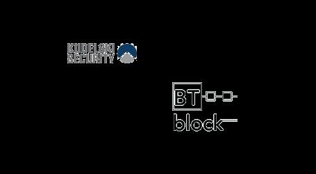Kudelski Security and BTblock to deliver secure blockchain and DLT deployments