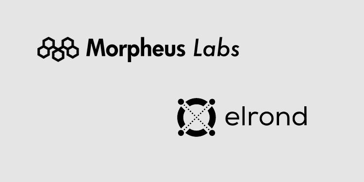 Elrond network integrated into Mopheus Labs' blockchain development platform