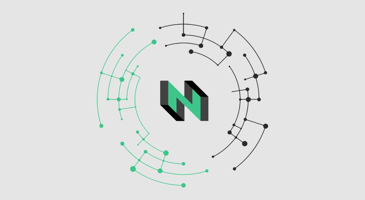 Nervos Bug Bounty - CryptoNinjas
