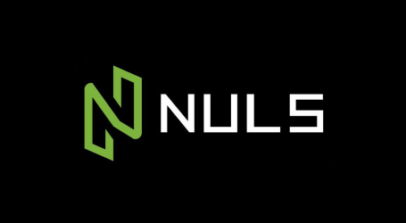 Blockchain infrastructure provider NULS gets additional investment from Ulysses Capital