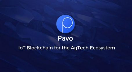 Pavo to host crypto and blockchain event in Istanbul