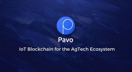 Pavocoin Ag Execs Head to the UAE to Participate in the Dubai Blockchain Summit on August 9