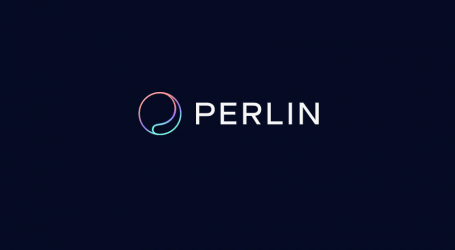 Decentralized privacy-preserving cloud network Perlin releases testnet