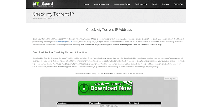 How to Check Your Torrent IP Quickly and Easily