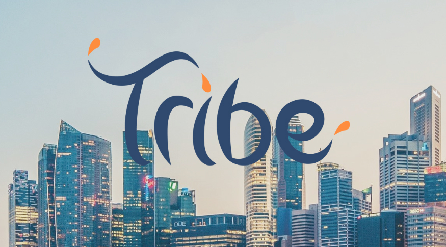 TRIVE, ICON, and PwC to launch government of Singapore backed blockchain accelerator